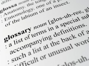 definition of the term glossary